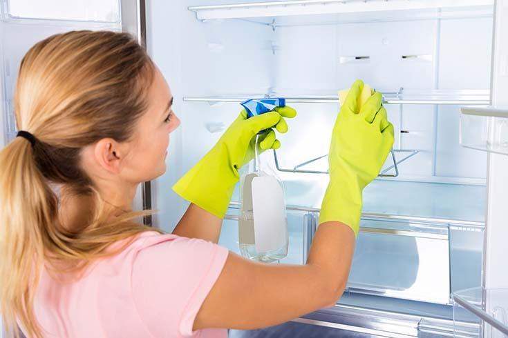 Как избавиться от плесени в холодильнике