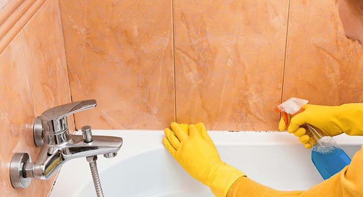 Как вывести плесень в ванной
