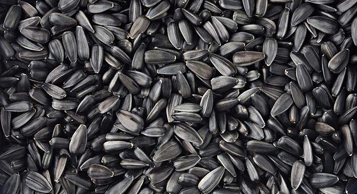 Полезные свойства семечек
